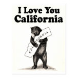 Vintage I Love You California State Bear Postcards