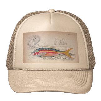 Vintage Illustration Fisherman's Hat