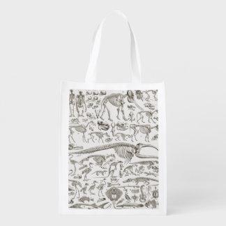 Vintage Illustration of Human & Animal Bones Reusable Grocery Bag
