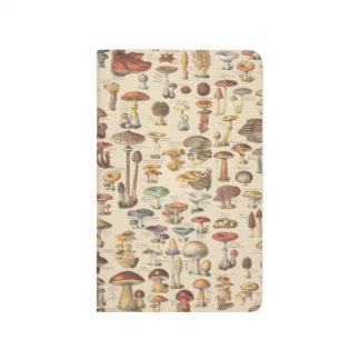 Vintage illustration of mushrooms journal