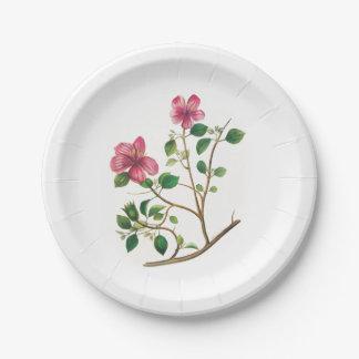 Vintage Illustration Of Pink Flowers 7 Inch Paper Plate