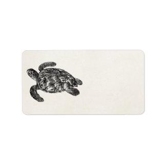 Vintage Imbricated Sea Turtle - Turtles Template Label