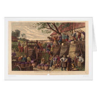 Vintage in California (0604A) Greeting Card