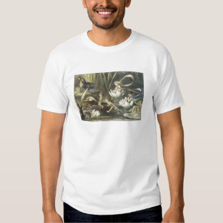 Vintage In Fairyland,1870 Fairies And Waterlilies T Shirts