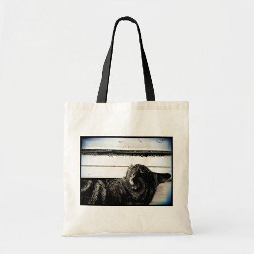 Vintage Indigo Window Nap Tote Bag