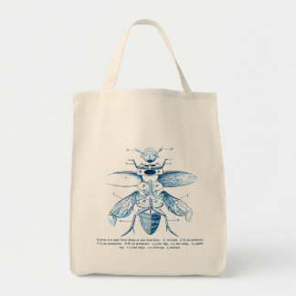 Vintage Insect | Entomology | Beetles | Blue Grocery Tote Bag