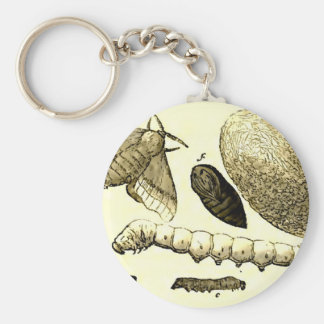 Vintage Insect Image | Silkworm | Moth Basic Round Button Key Ring