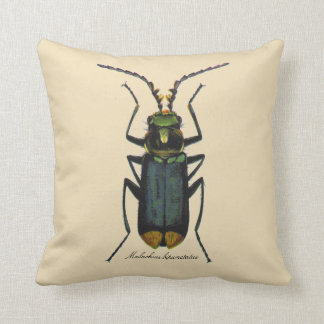 Vintage Insects Entomology Malachite Beetle Rever. Throw Pillow