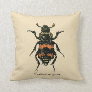 Vintage Insects Sexton Beetle Entomology Revers. Cushion