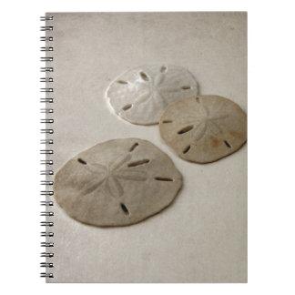 Vintage Inspired Sand Dollars Notebook