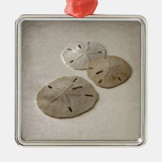 Vintage Inspired Sand Dollars Silver-Colored Square Decoration