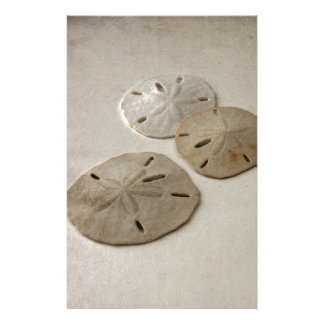 Vintage Inspired Sand Dollars Customised Stationery
