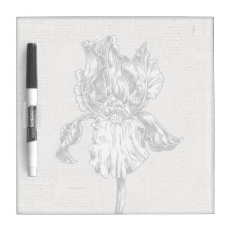 Vintage Iris Drawing Dry Erase Board