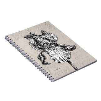 Vintage Iris Drawing Spiral Notebook