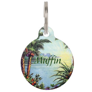 Vintage Island Pet Name Tag