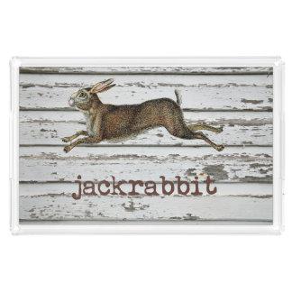 Vintage Jack Rabbit Hare Illustration Cabin Decor Acrylic Tray