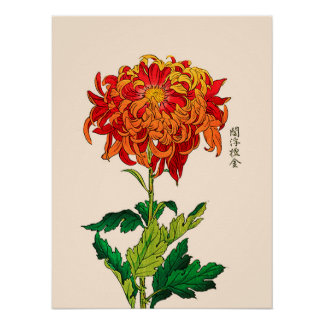 Vintage Japanese Chrysanthemum. Rust and Orange Poster