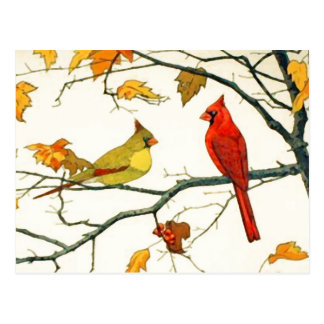 Vintage Japanese drawing, Cardinals on a branch Postcard