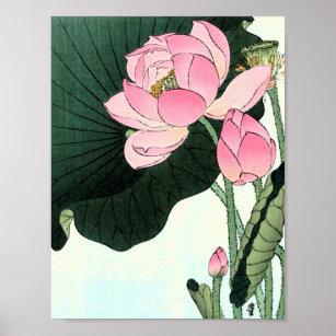Vintage Lotus Flower Posters Prints Zazzle Uk