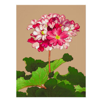Vintage Japanese Hydrangea. Pink and Green Poster