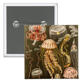 Vintage Jellyfish Antique Jelly Fish Template 15 Cm Square Badge