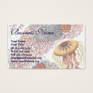 Vintage Jellyfish by Ernst Haeckel, Discomedusae