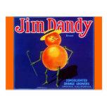 Vintage Jim Dandy Anthropomorphic Orange Postcards