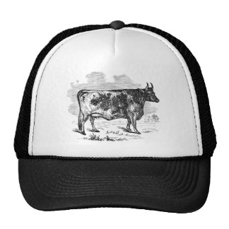 Vintage Kerry Cow Personalized Bull Illustration Hat