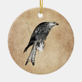 Vintage Kite Hawk Illustration - 1800's Birds Christmas Ornament