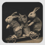 Vintage Kitten and Bunny Funny photo Square Stickers