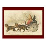 Vintage kitten coach postcard