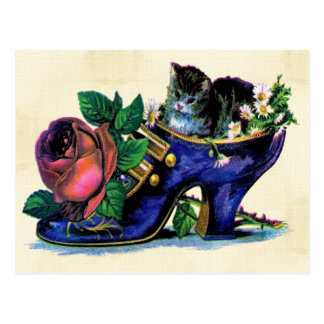 Vintage Kitten In Lady's Shoe Postcard
