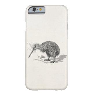 Vintage Kiwi Bird Antique Birds Template iPhone 6 Case
