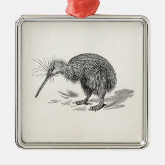 Vintage Kiwi Bird Antique Birds Template Christmas Ornament