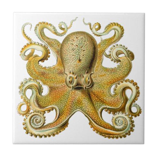 Vintage Kraken, Giant Octopus by Ernst Haeckel Tile