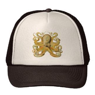 Vintage Kraken, Octopus Gamochonia, Ernst Haeckel Cap