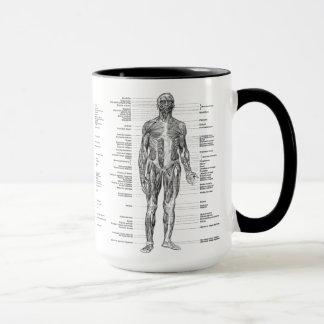 Vintage - Labeled Human Anatomy Muscles Mug