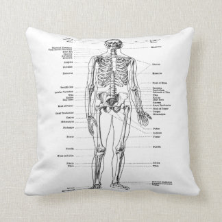 Vintage - Labelled Skeleton - Front and Back Cushion