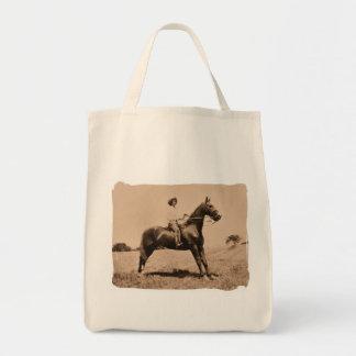 Vintage Lady on Horse