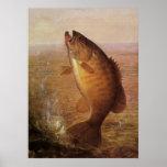 Vintage Largemouth Brown Bass Fish, Sports Fishing Poster