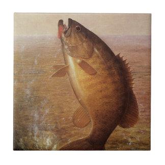 Vintage Largemouth Brown Bass Fish, Sports Fishing Tile