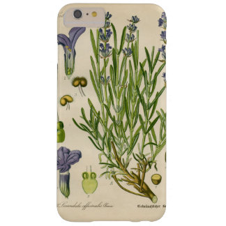 Vintage Lavender Botanical Print iPhone 7 Cases