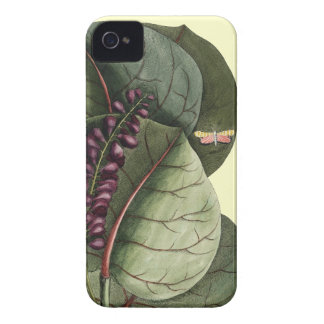 Vintage leaves illustration iPhone 4 case