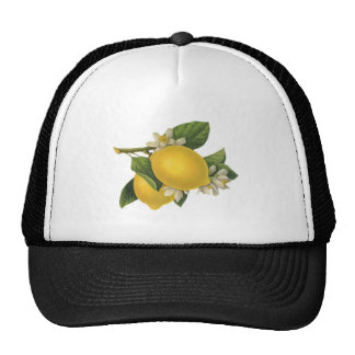 Vintage Lemons Illustration Trucker Hat