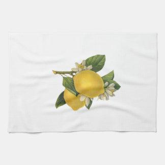 Vintage Lemons Illustration Tea Towel