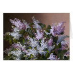Vintage Lilacs Greeting Card