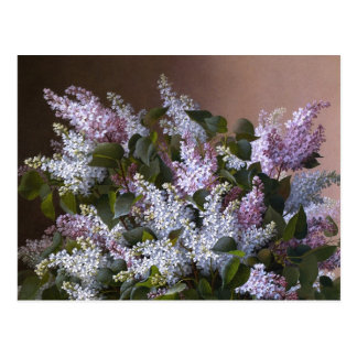 Vintage Lilacs Postcard