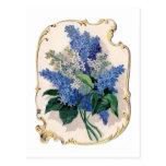 Vintage Lilacs Postcards