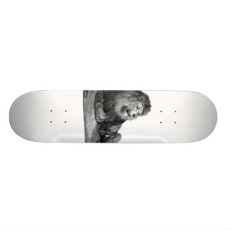 Vintage lion drawing, laying down looking right 21.6 cm skateboard deck