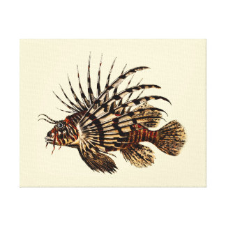Vintage Lionfish Art Print Canvas Prints